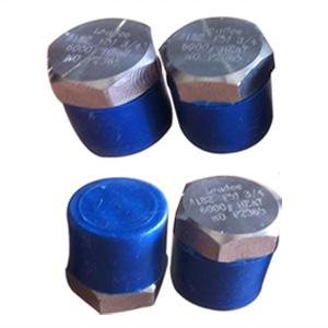 hex-head-plug-astm-a182-gr-f51-uns-s31803-mnpt-ends